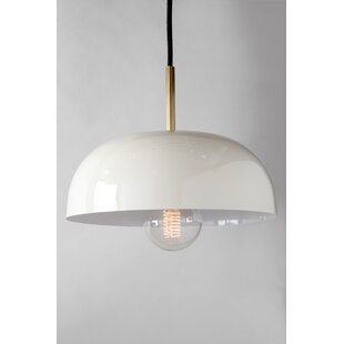Turn on the Brights Walter 1-Light Dome Pendant