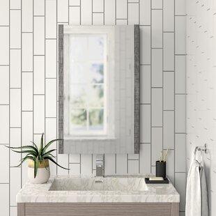Craig 50cm X 80cm Surface Mount Mirror Cabinet By Zipcode Design