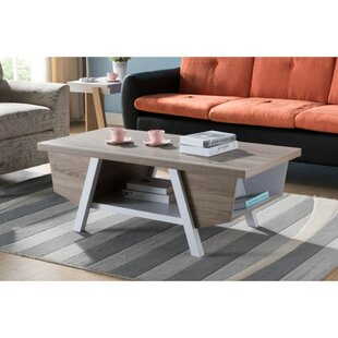 Holcomb Wooden Coffee Table with Storage