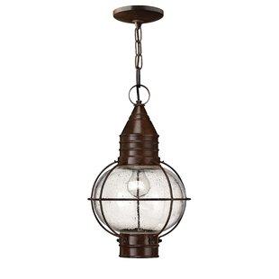 Longshore Tides Jolie 1-Light Outdoor Hanging Lantern