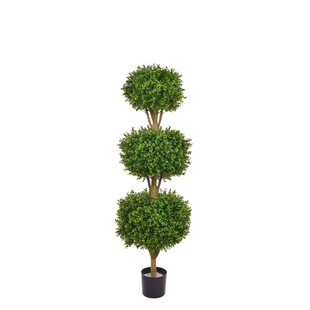 Artificial Buxus Boxwood Topiary In Planter By The Seasonal Aisle