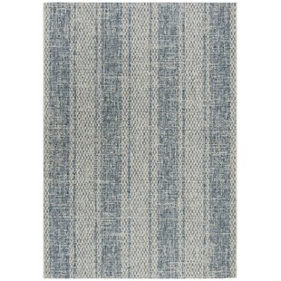 Myers Gray/Blue Indoor/Outdoor Area Rug