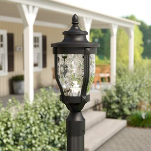 Porterfield Outdoor 1-Light LED Lantern Head by Three Posts