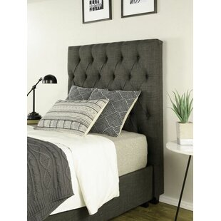 Darby Home Co Ariane Twin Upholstered Storage Metal Panel Bed