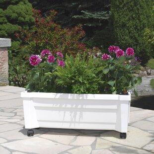 Review Plastic Planter Box