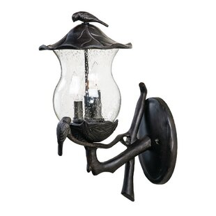 Paxson 2-Light Outdoor Sconce by One Allium Way