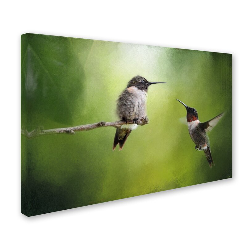 Trademark Art Wake Up Call Hummingbirds Graphic Art Print On Wrapped Canvas Wayfair