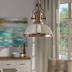 Roa 1-Light Dome Pendant by Breakwater Bay