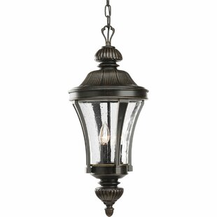 Affordable Price Triplehorn 3-Light Traditional Hanging Lantern By Alcott Hill