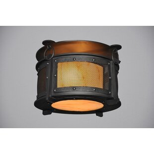 Steel Partners Rogue River 1-Light Harstene Mesh Flush Mount