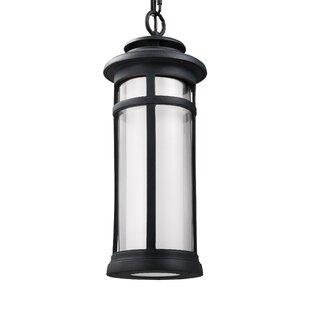 Latitude Run Ginger 1-Light Outdoor Pendant