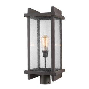 Beeching Outdoor 1-Light Lantern Head By Ivy Bronx