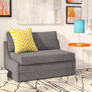 Bargain Sabine Sleeper Loveseat by Zipcode Design Reviews (2019) & Buyer's Guide