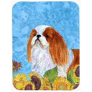 Review English Toy Spaniel Glass Cutting Board By Caroline's Treasures