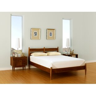 Tempur-Pedic Contour Select 10