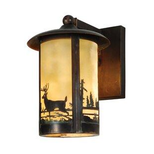 Top Reviews 1-Light Outdoor Wall Lantern By Meyda Tiffany