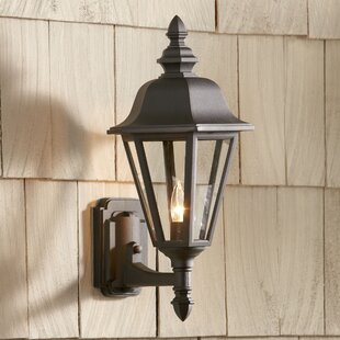 Buy clear Gleason Outdoor Sconce By Birch Lane™