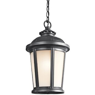 Daniel 1-Light Outdoor Hanging Lantern
