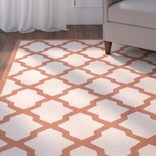 Herefordshire Beige/Terracotta Indoor/Outdoor Area Rug