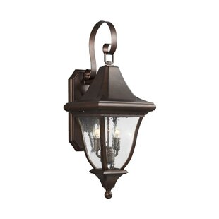 Darby Home Co Haubstadt 2-Light Outdoor Wall Lantern