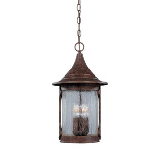 Waneta 4-Light Outdoor Hanging Lantern