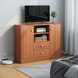 Dani-Erin TV Stand by Latitude Run®