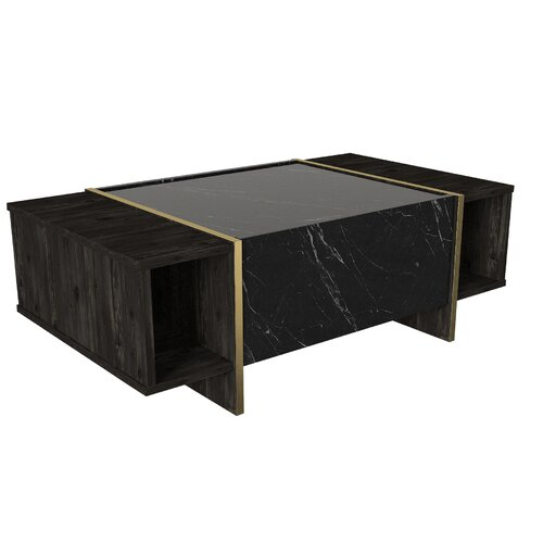 Lasne Coffee Table with Storage Fairmont Park