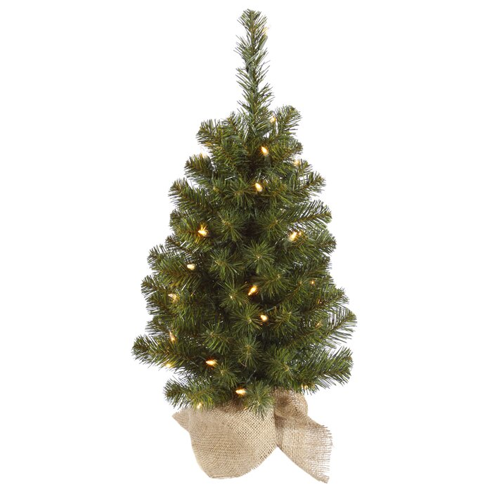 The Holiday Aisle Felton 2' Green Pine Artificial Christmas Tree ...