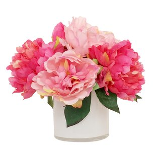 Peonies youll love wayfair quickview mightylinksfo