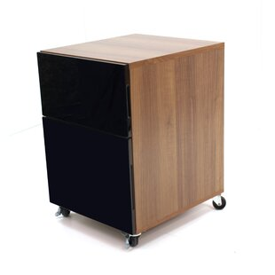 Abbot Designer 2-Drawer Filing Cabinet By Mercury Row