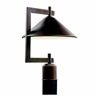 Ripley Outdoor 1-Light Lantern..