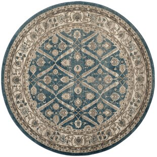 Sofia Blue/Beige Area Rug by Darby Home Co