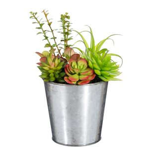 Artificial Plant In Pot Image