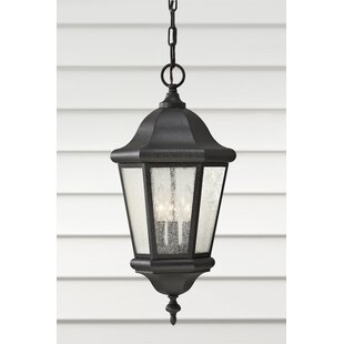 Linhart Hanging Lantern by Darby Home Co