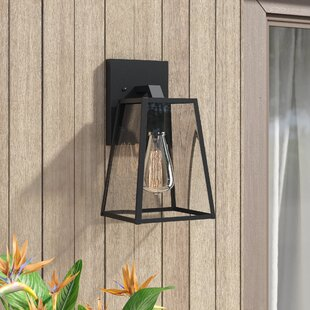 Brill Outdoor Wall Lantern