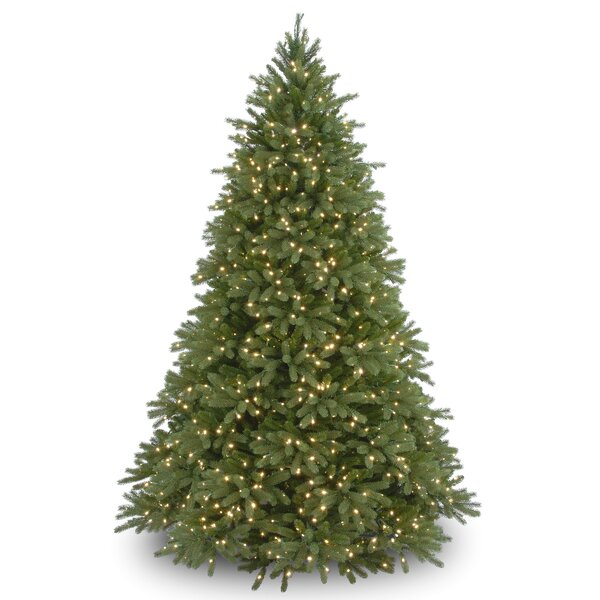 14 Ft Christmas Tree Part - 40: 7.5u0027 Green Fir Artificial Christmas Tree With 1250 Clear Lights With Stand