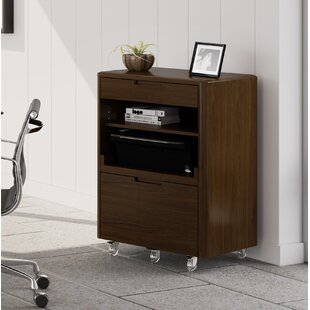 Sola 2-Drawer Mobile Vertical Filing Cabinet
