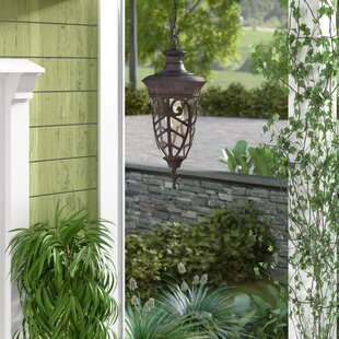 Look for Dunamoy 1-Light Outdoor Hanging Lantern By Astoria Grand
