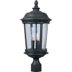 Neilsen Outdoor Lantern Head by Darby Home Co