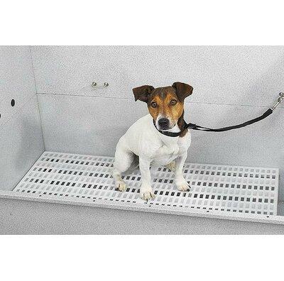 Dog Grooming Tables Amp Bath Tubs You Ll Love In 2019 Wayfair