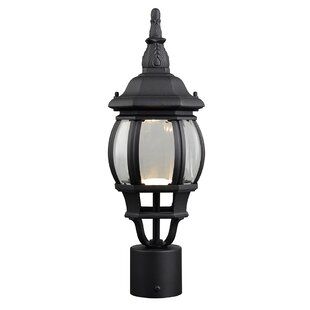 Diederich 1-Light LED Lantern Head by Alcott Hill