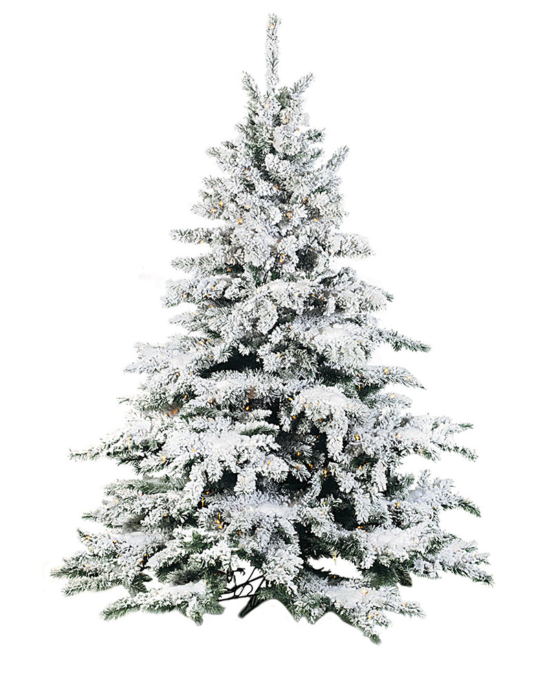 The Holiday Aisle Flocked 9 Green White Pine Artificial Christmas Tree Reviews Wayfair
