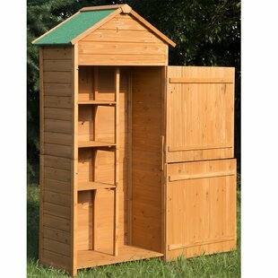 3 Ft. W X 2 Ft. D Apex Wooden Tool Shed By WFX Utility
