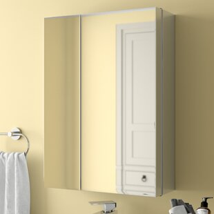 Clary 43 X 59cm Surface Mount Flat Mirror Cabinet By Rebrilliant