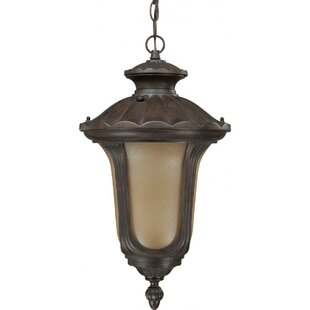 Nuvo Lighting Beaumont 1-Light Outdoor Hanging Lantern