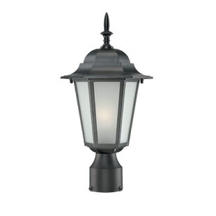 Raleigh Outdoor 1-Light Lantern Head by Charlton Home