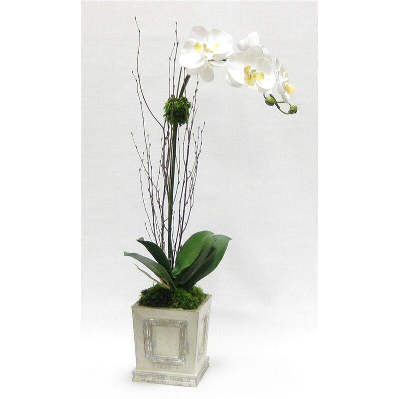 floral home decor orchid floral design wayfair.htm bloomsbury market orchid floral arrangement in wooden small square  orchid floral arrangement in wooden