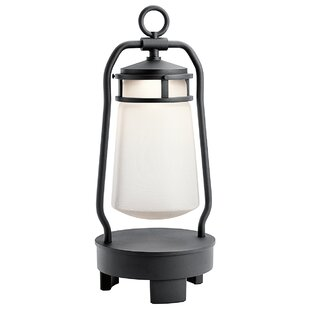 Jaylynn Portable Black Battery Powered Bluetooth LED Outdoor Lantern By Longshore Tides