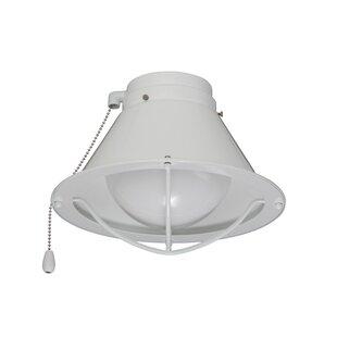 1-Light Globe Ceiling Fan Globe Light Kit