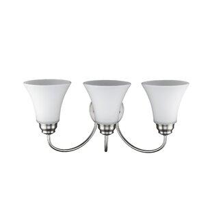 Charlton Home Canales 3-Light Vanity Light